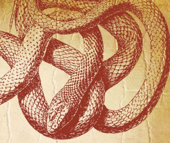 Gil's Critters Reptile Talk